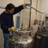 תמונות מס.817 משוייכות לפנים במעבדה